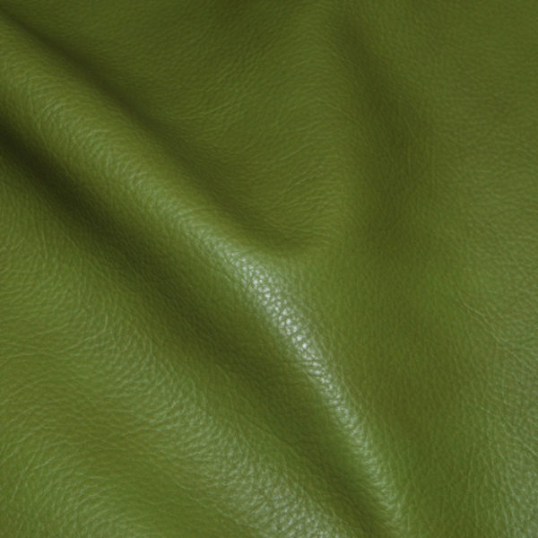Green Leather Hides Carroll Leather